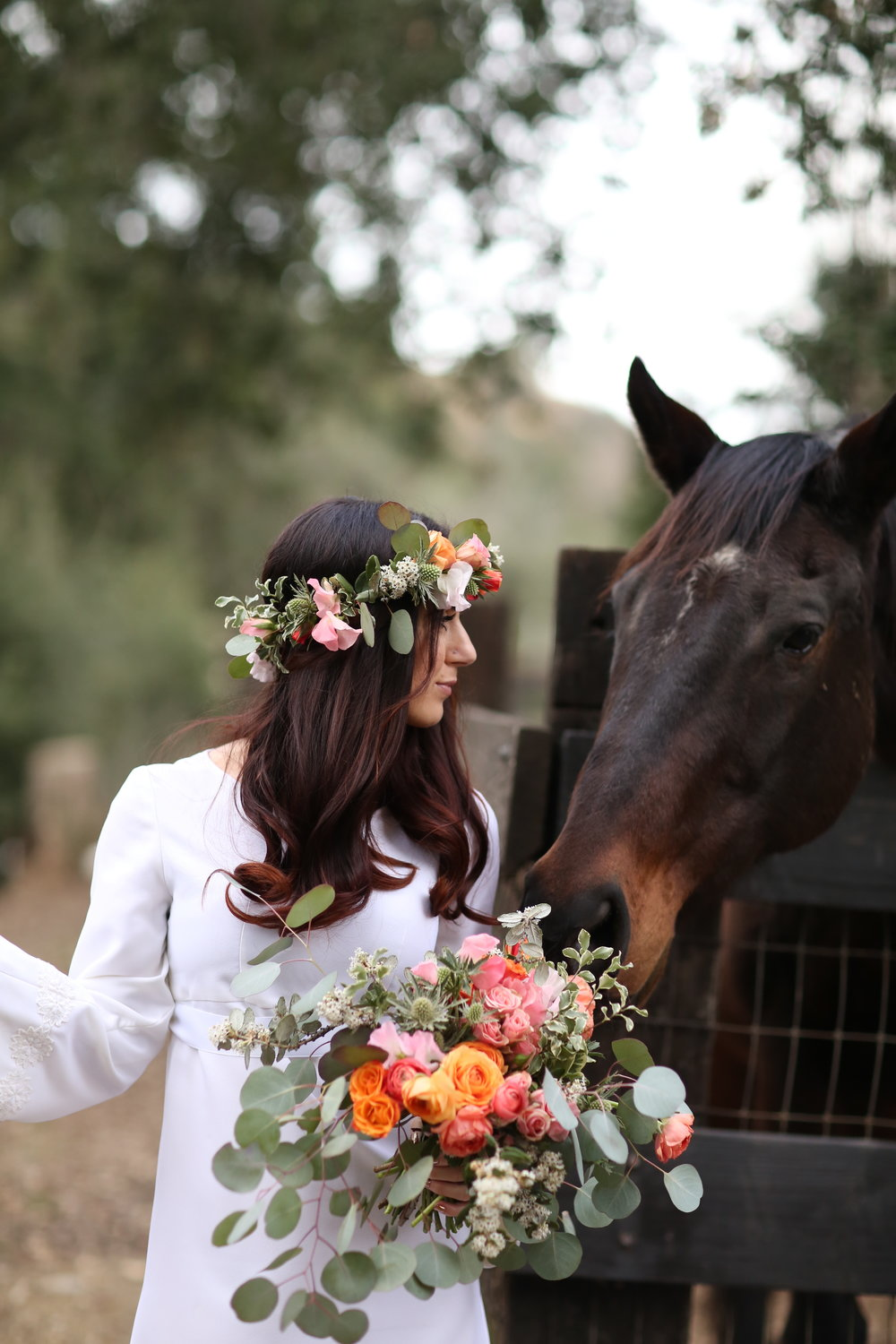 Horse sniffing the bridal bouquet. Bride is wearing vintage dress.