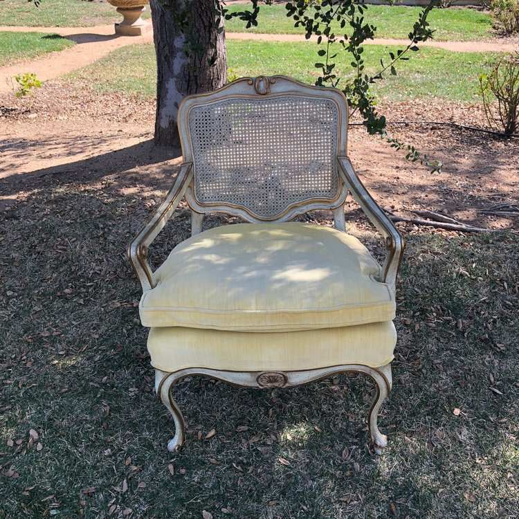 """Anastasia   Gold velvet Bergere chair. Beautiful cream painted wood with gold leafing. Caned back with French Provincial legs. 32"""" tall x 25"""" wide. Seat 19"""" high. We have two."""