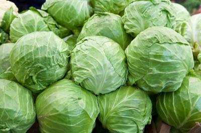 choux-cabbage_400_266.jpg