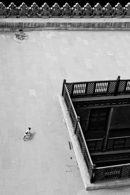 Rooftop, Cairo