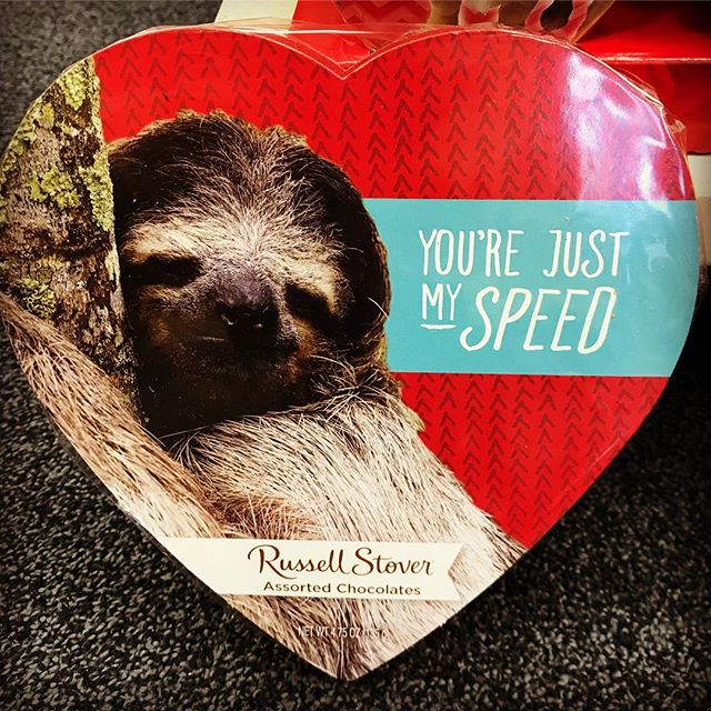 A message from a sloth for your weekend... have a great one! #bakerspharmacy #jamestownri #slothmessage #valentines #chocolate #liveyourbest