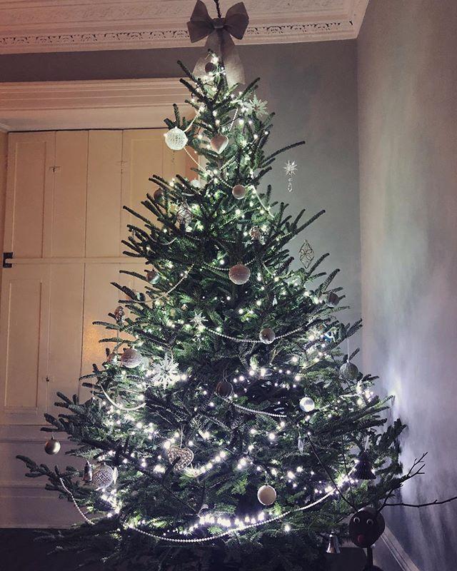 Aaaaannnndddd it's up! #hohoho #merrychristmas #christmastree #christmasdecorations #tree #reindeer #macaronmistress