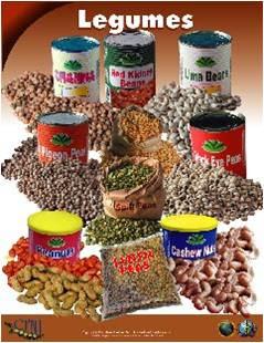legumes-carib-food-group.jpg