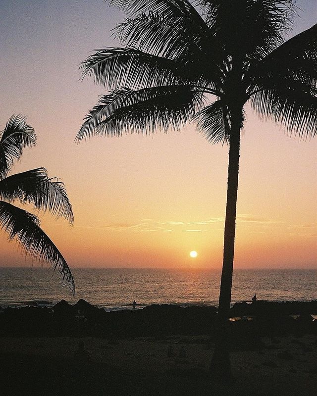are you a sunrise or a sunset kind of person? personally I just like all of the time between sunrise and sunset. especially those moments of gold and the secrets in the blues. #35mm #hawaii #northshore #filmisnotdead