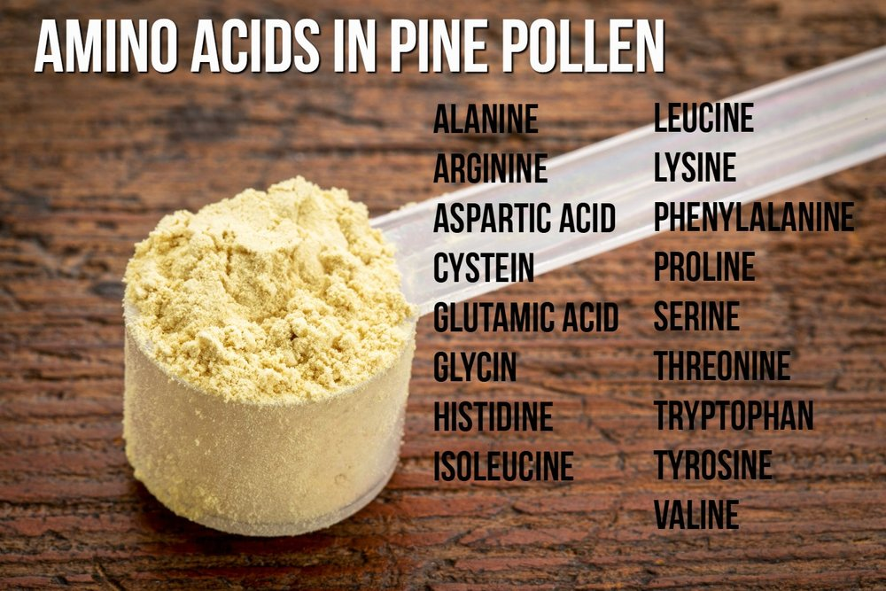 Amino Acids in Pine Pollen