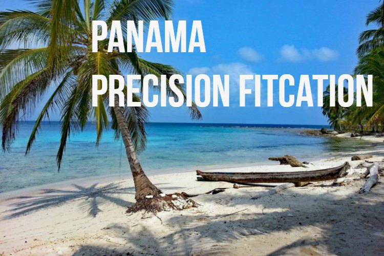 Panama Precision FitCation.jpg