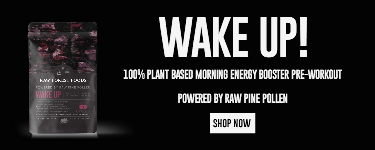 Wake Up Energy Booster Banner Ad