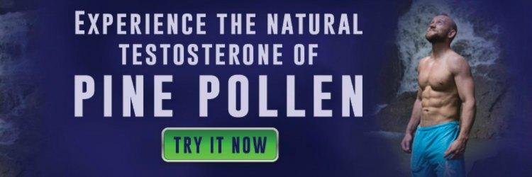 Boost Testosterone Pine Pollen Banner