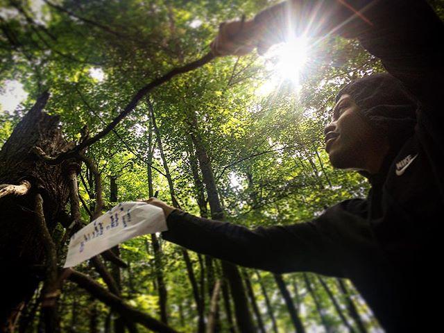 Letting curiosity lead the way  #trueeducation #lifelonglearning  #whatmakesavillage #engn #sullivancountyny #nature #wonder #curiosity #outdooreducation #sullivancatskills #catskills