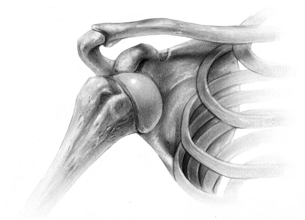 Anterior glenohumeral dislocation