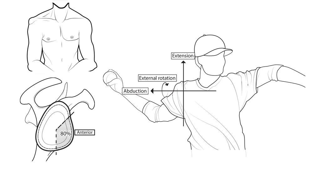 4. Revised illustrations