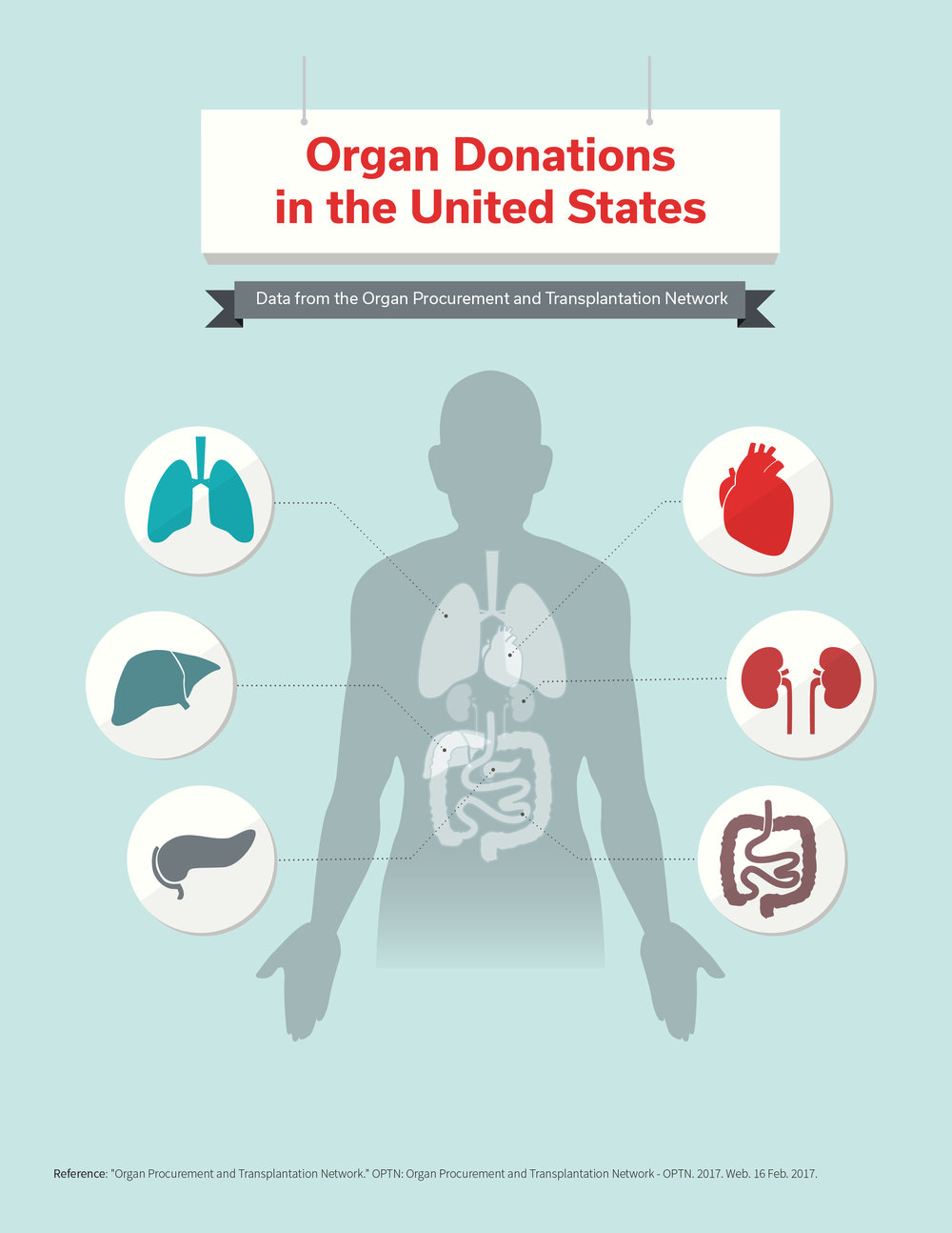 Organ Donations in the United States