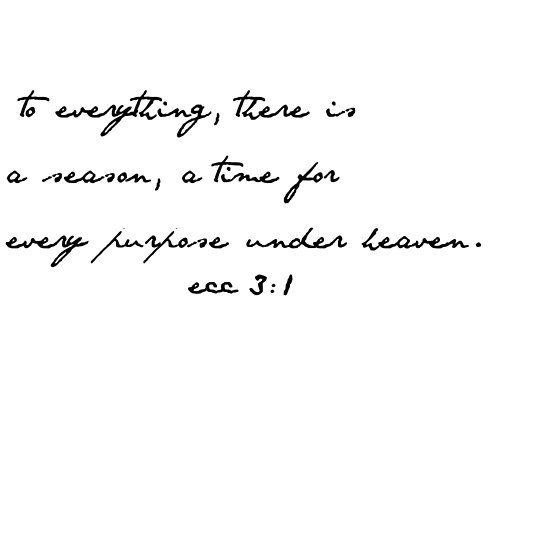 Source:https://www.redbubble.com/people/dariasmithyt/works/30059439-ecclesiastes-3-1-bible-verse?p=poster