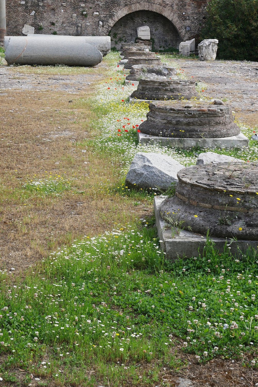 Column-bases-Roman-Forum-Rome.JPG