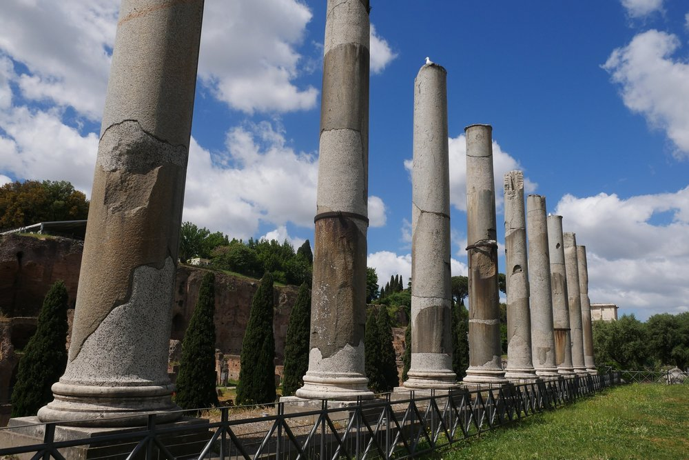 Column-Ruins-engagement-spot-Roman-Forum-Rome.JPG