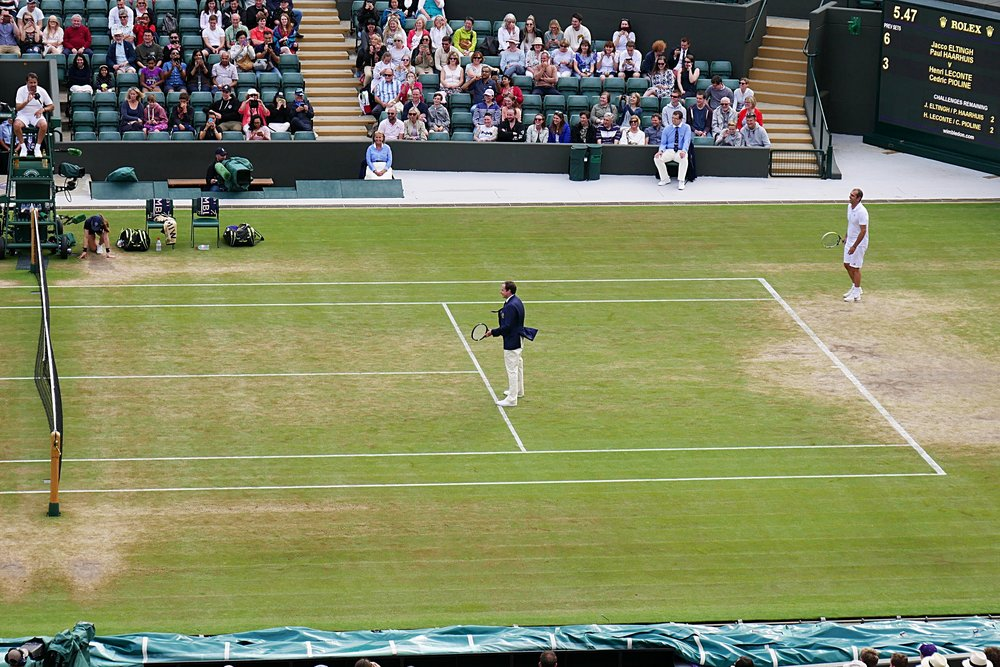 Umpire-playing-Wimbledon-2017.JPG