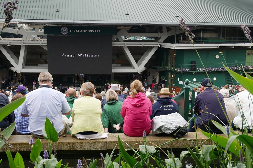 Crowds-on-Murray-Mound-Wimbledon-2017.JPG