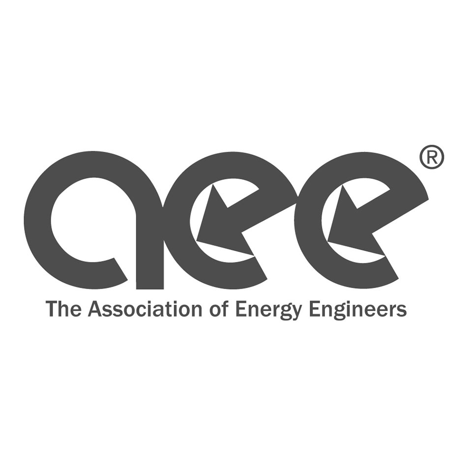 partner_logos_grey_AEE.jpg
