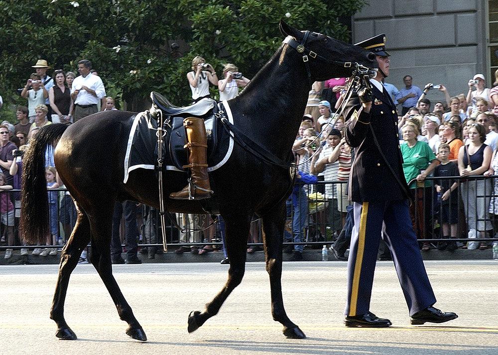 Похорон Рональда Рейгана  U.S. Navy photo by Photographer's Mate 2nd Class Aaron Peterson