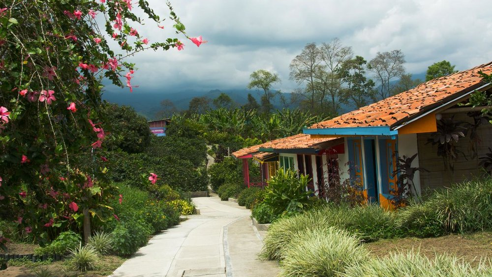 A Colombian coffee farm in the Quindio region. Image by G Adventures.