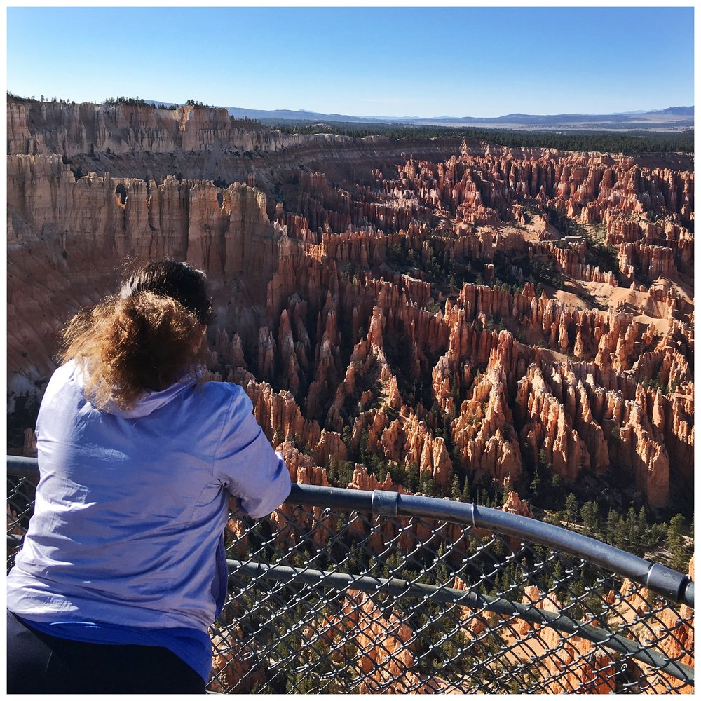 Looking out over Bryce Canyon