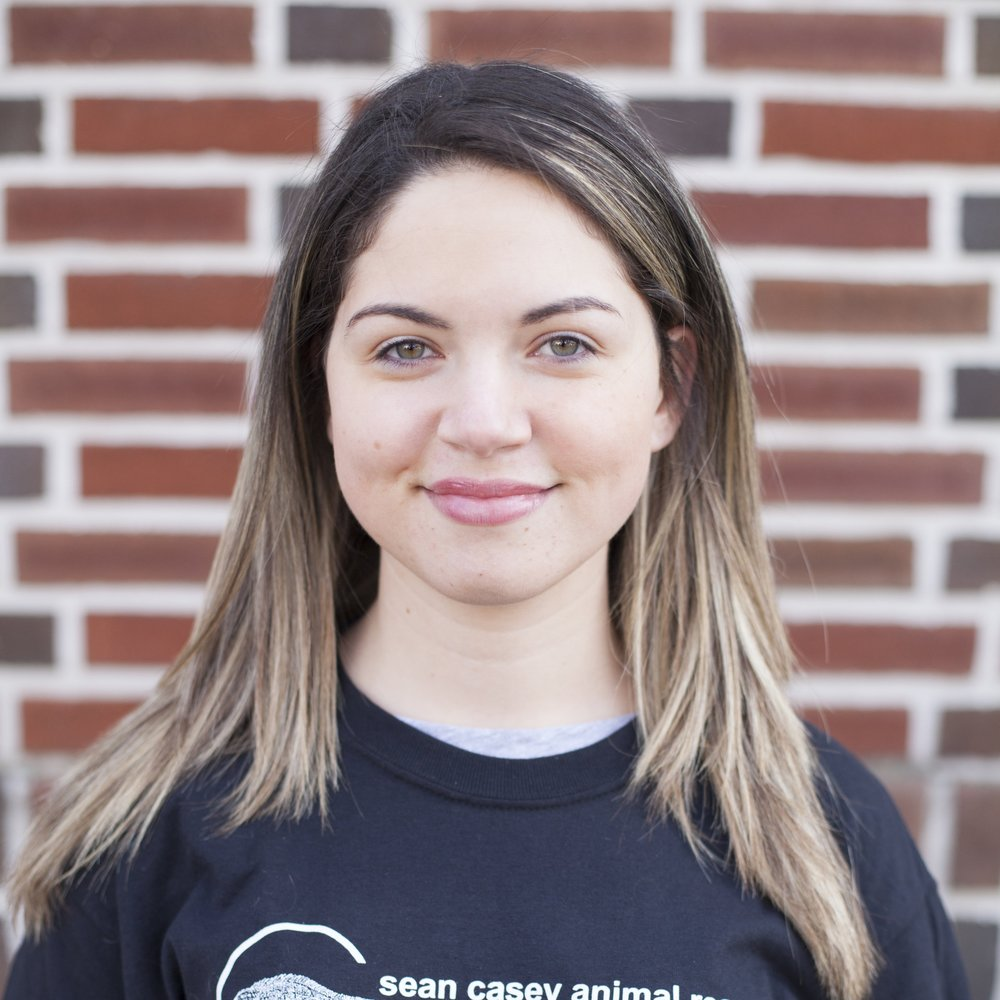 Valerie Greenblatt / Foster Care Coordinator