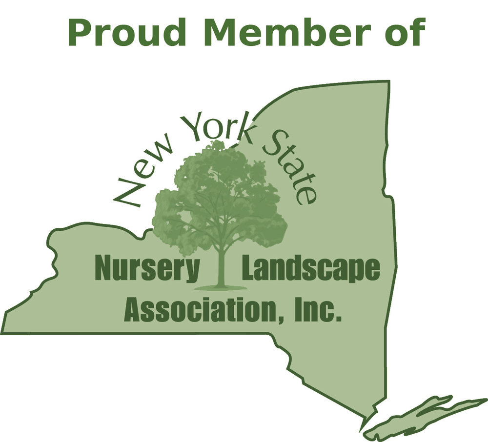 Proud-Member-of-NYSNLA.jpg