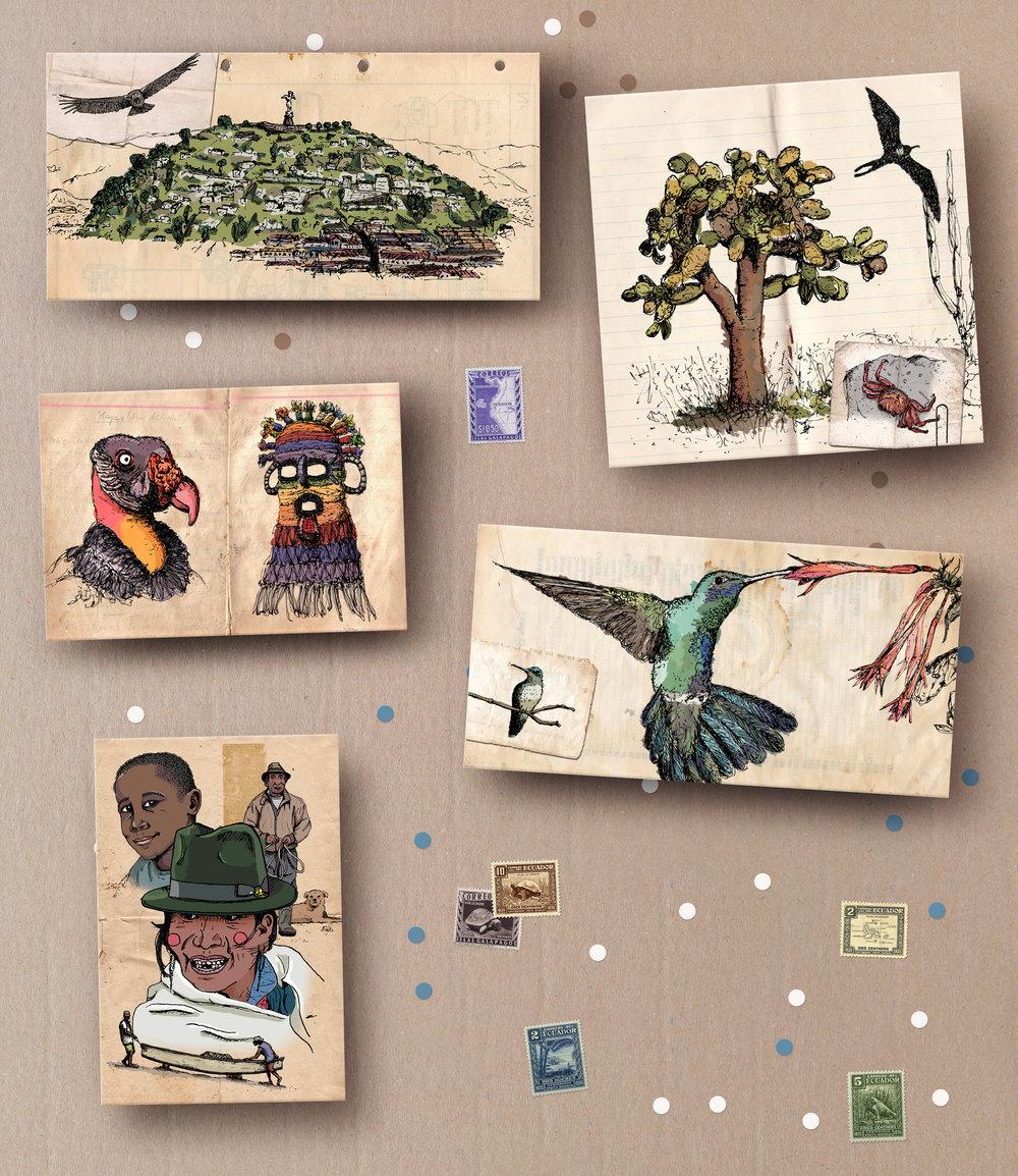 DIS postales 03.jpg