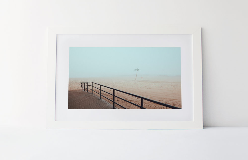 Palm beach  40cm x 60cm print Frame included
