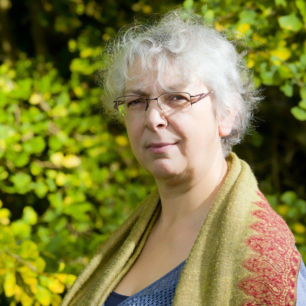 Ester Van Der Voet   Associate Professor at the Institute of Environmental Sciences  Leiden University   full bio