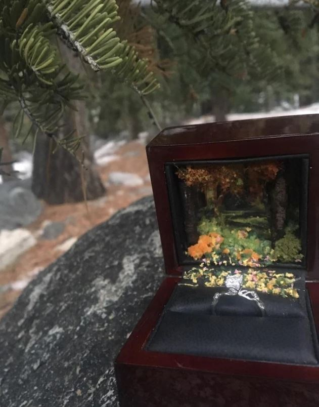 custom-nature-scene-ring-box