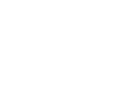 Beast Car Flags
