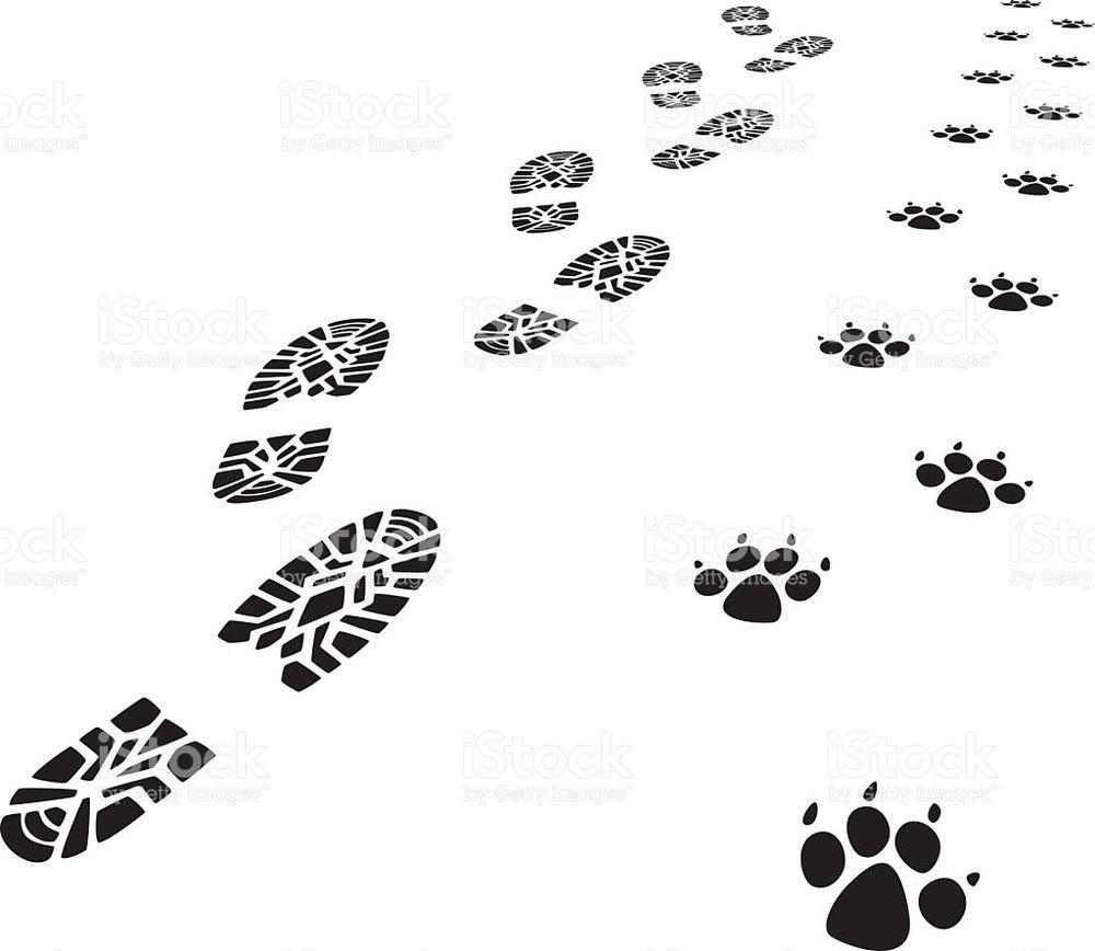 Bootsand paws.jpg