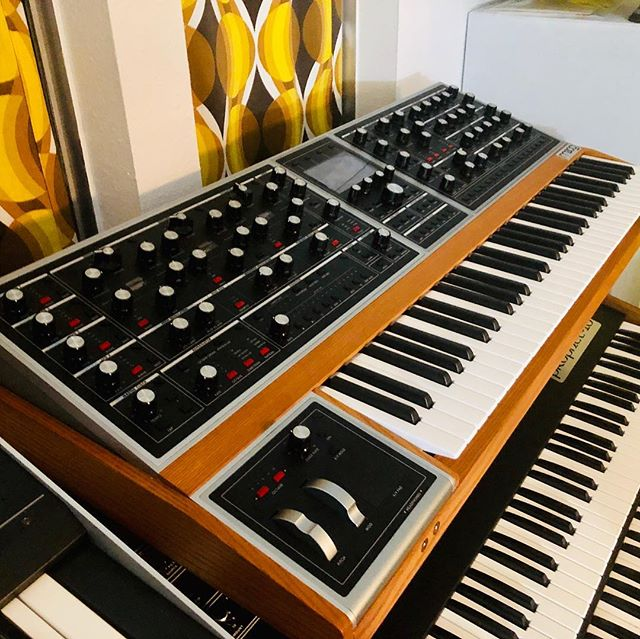 Moog One in the house! ✨🙌 Ready to come track this polyphonic monster on your new release ?! 🤘🏻 Affordable rates, you may be 😮 suprised DM us for the deets! 💜✨ . . . . . . . . #synths #music #techno #beats #electronic #housemusic #dj #electro #bass #dancemusic #party #dance #edm #namm2019 #edmfamily #musicislife #edmlifestyle #tomorrowland #electronicdancemusic #producer #drop #euphoria #synth #memorymoog #studio #synthesizer #banger #love #moog #ambient @moogsynthesizers @moogfest @moogaudioofficial