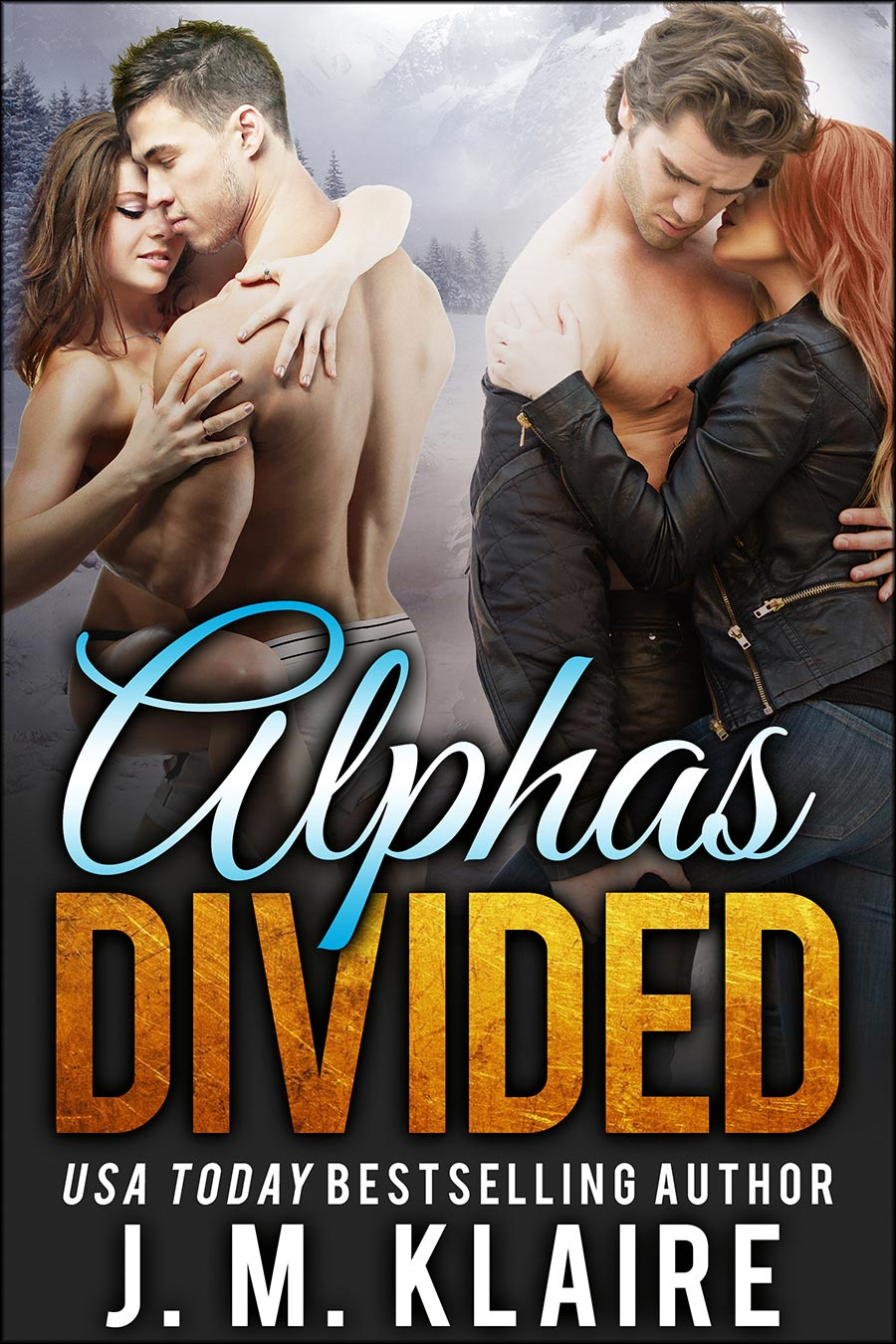 Alpha-Divided.jpg