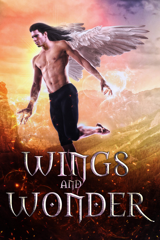 $100 - Wings And Wonder
