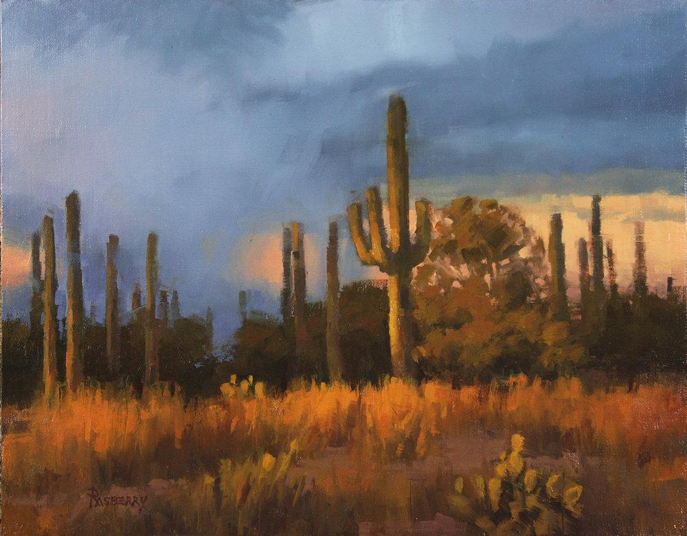 Saguaro Storm 11x14 2015.jpg