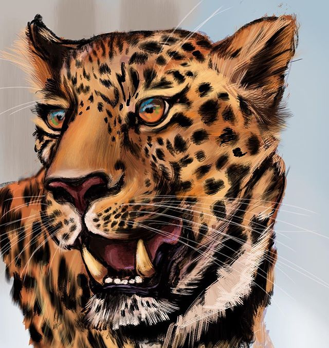 Trying out a more rough styled leopart illustration. #illustration #ipadsketch #ipadpro #ipad #procreateapp #procreate #applepencil #color #ninamartinart