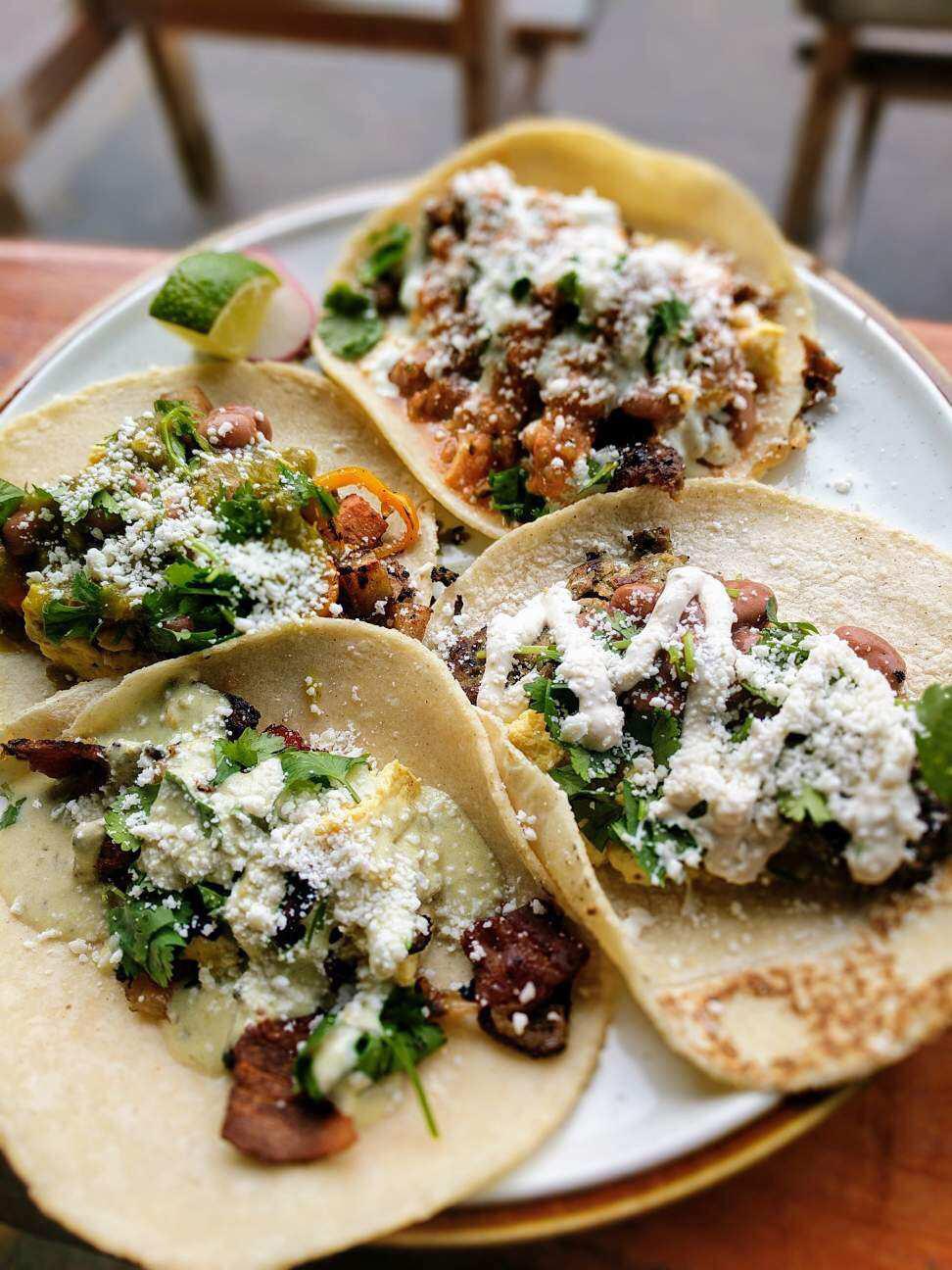 taco-pedaler-brunch-breakfast-tacos-plate.JPG