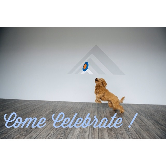 Join us this Saturday morning, 6/14, for Rêve's one year anniversary party! Book a ride with Carolyn or Amy and/or stop by to say hello between 9:20 and 11 a.m. Treats, coffee, and a great start to your weekend await! We can't wait to celebrate with you!