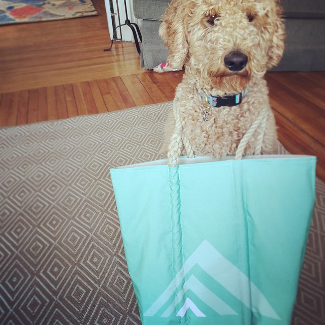 Rêve Sea Bags are available at the studio now and Raglan agrees with us that they're the perfect spring accessory! @seabagsmaine