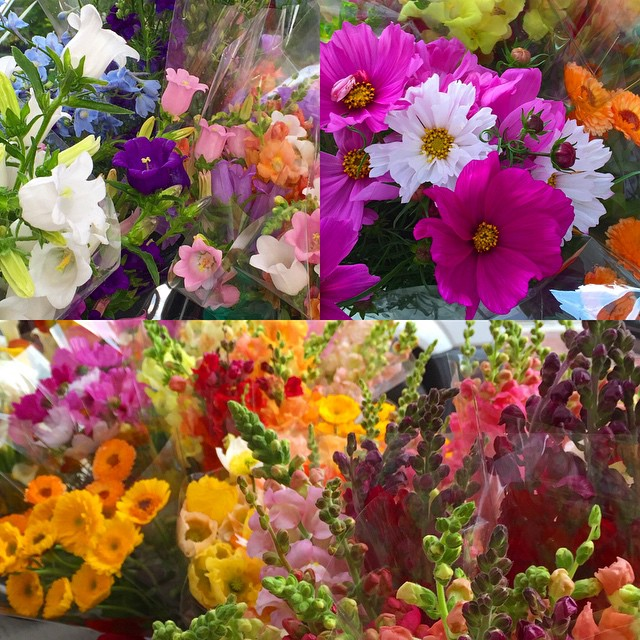 Many of you ask us where we find our front desk flowers. Look no further than the Kennebec Flower Farm stand and @chasgill at @portlandfarmers in Monument Square on Wednesdays! These are the beauties we saw this morning. #portlandmainefarmersmarket #buylocal #kennebecflowerfarm