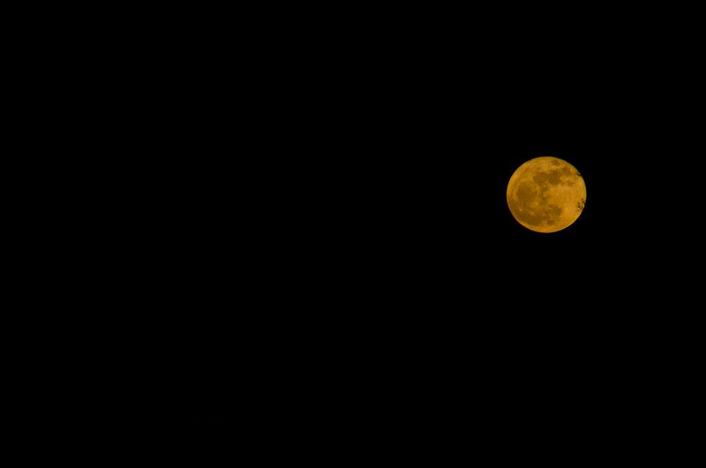 Super Moon!