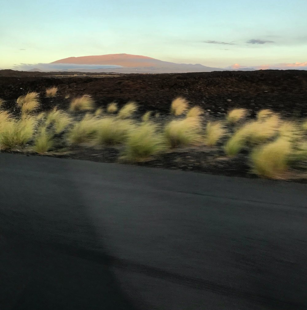 The dormant Mauna Kea looms beyond a beautiful ancient lava scape. Soft tufts of green grass edge our way to dinner with Clare.