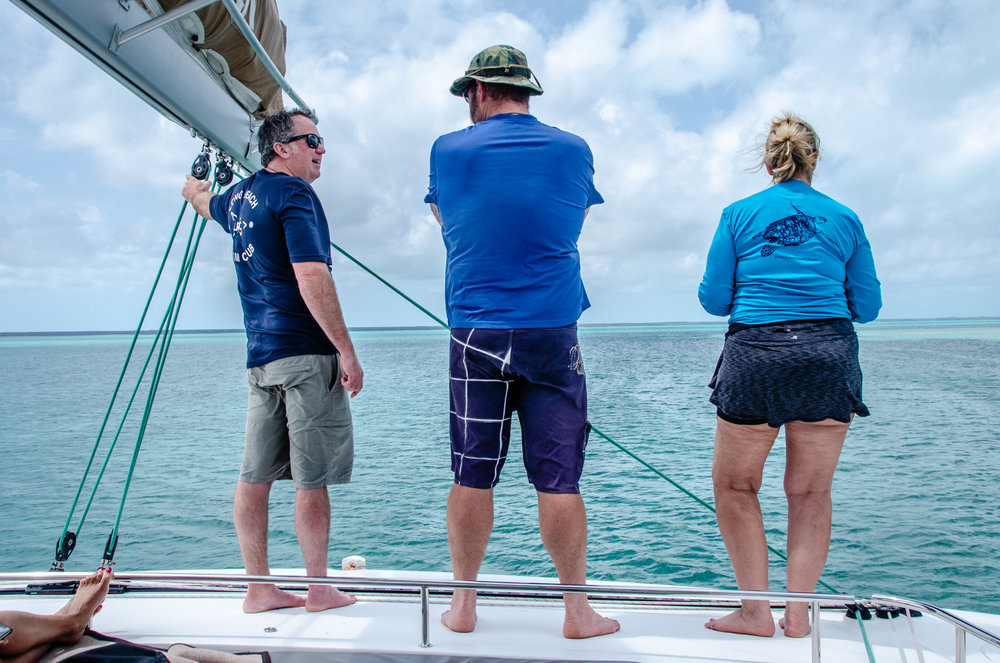 Our crew deliberating about next steps after exhilarating but slightly unnerving wildlife sighting, and relentless winds. Our strong crew shines with decisions made on the fly!