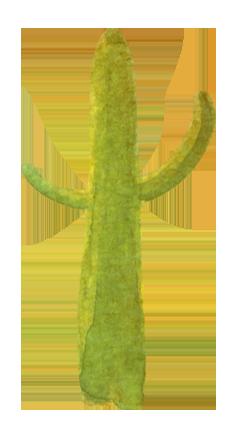 Cactus-1.png