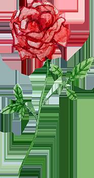 Rose-2.png