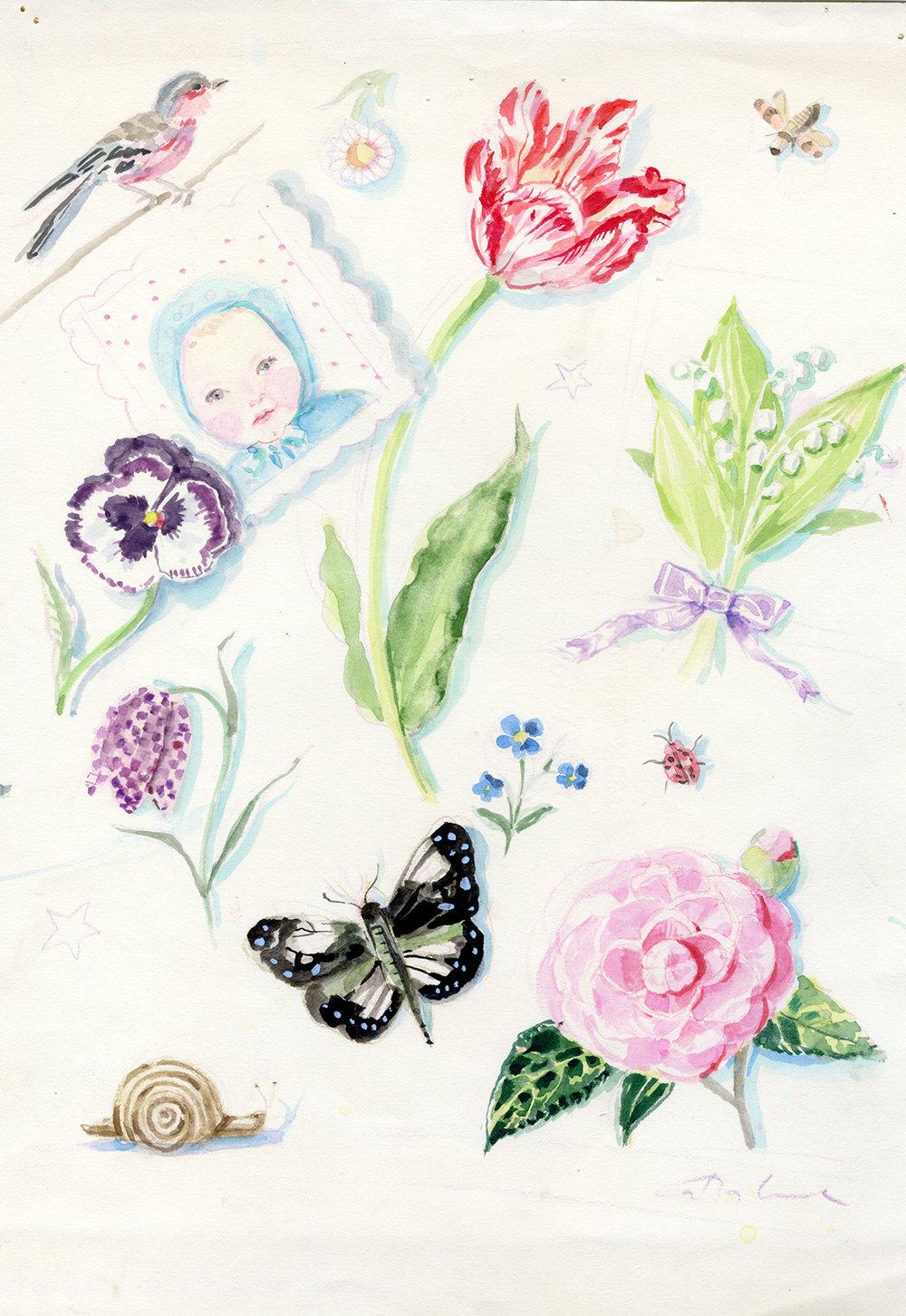 baby_tulip_camellia_pansy copy copy.jpg