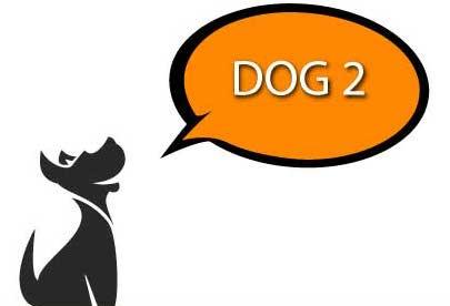 Bravopup Dog 1 Class