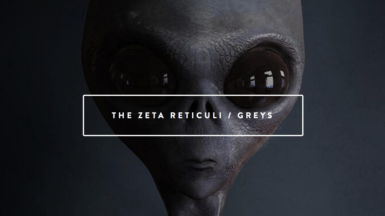 The Zeta's - FIFTY8